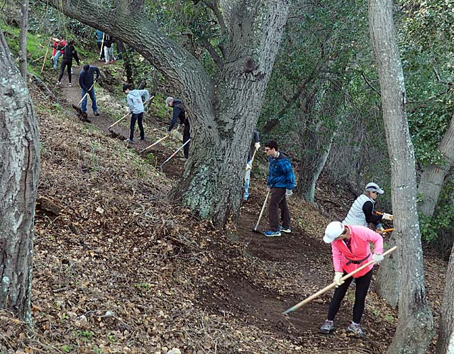 MLK Service Day on the Ohlone Trail, 1/13/18