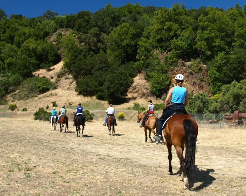 Santa Clara County Parks Volunteer Activities